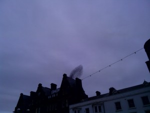 Is it a smoking chimney?