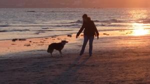 Cornish sunset with Sam